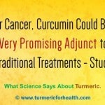 Curcumin Could Be a Very Promising Adjunct to Traditional Cancer Treatments