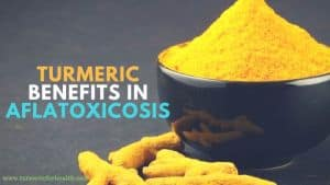 Turmeric Benefits in Aflatoxicosis