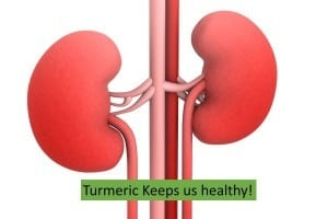 Turmeric for Kidney diseases