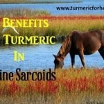 turmeric sarcoids featured