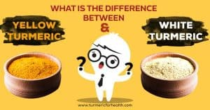 What Is The Difference Between Yellow Turmeric & White Turmeric