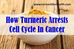 How Turmeric Arrests Cell Cycle In Cancer