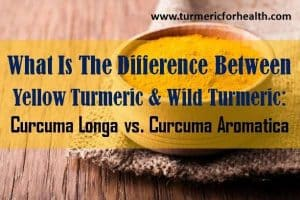 What Is The Difference Between Yellow Turmeric & Wild Turmeric: Curcuma longa vs Curcuma Aromatica