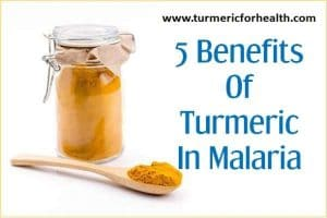 5 Benefits Of Turmeric In Malaria