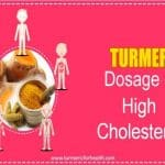 turmeric dosage for high cholesterol