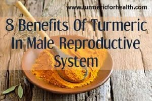 8 Benefits of Turmeric For Male Reproductive System