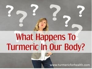 what happens to turmeric in our body